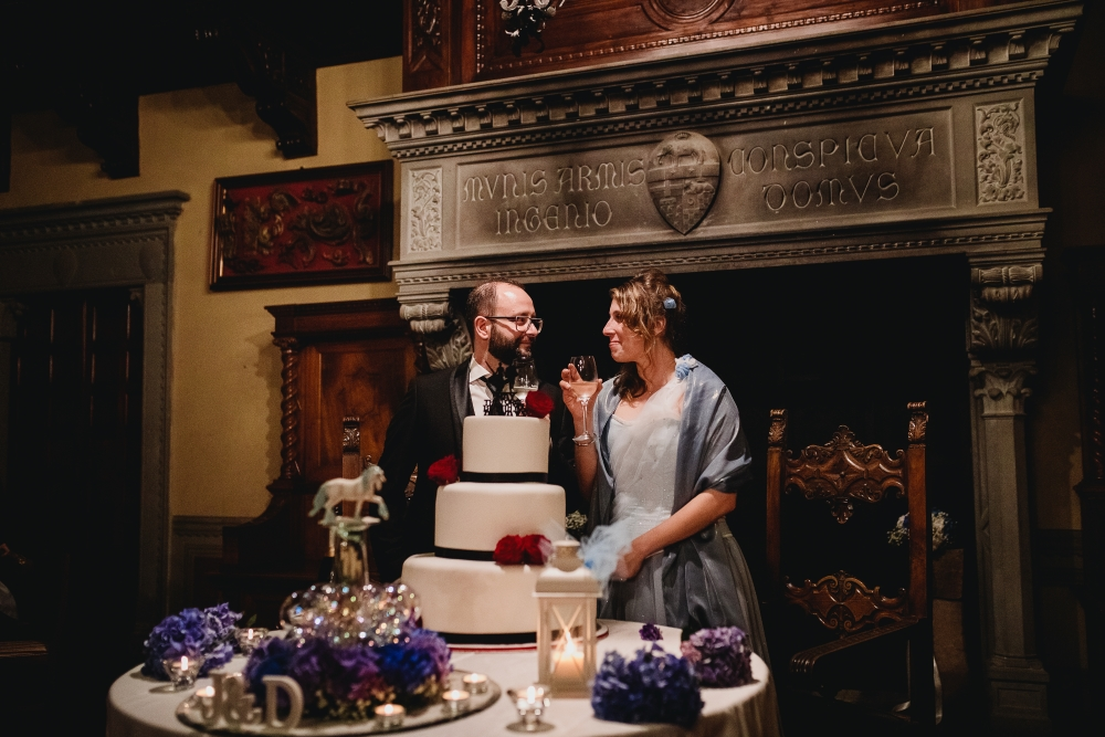 Happy spouses toasting behind a 50s style wedding cake, in front a hearth with heraldic shields